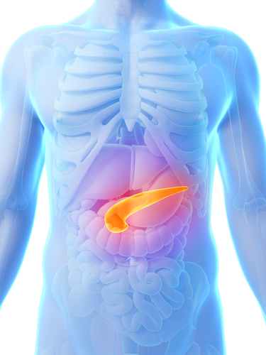 Type 1 Diabetes Patients' Lives Can Be Significantly Improved By External Artificial Pancreases