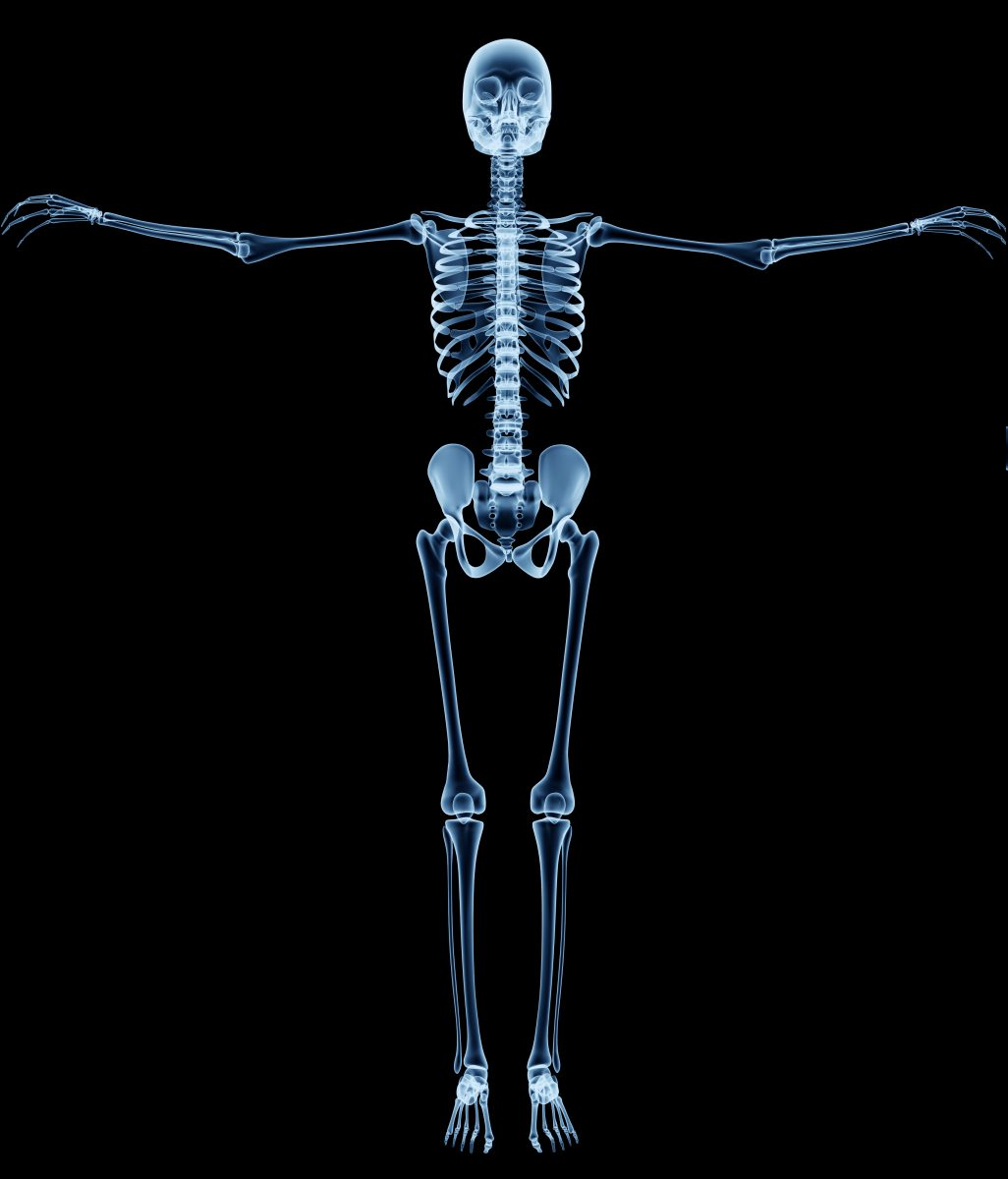 Diabetes Therapy Rosiglitazone Found to Enhance Fat Accumulation in Bones – Exercise Can Partially Offset The Effect
